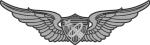 Army Astronaut badge