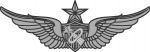 Army Astronaut badge - Master