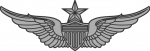 Army Aviator badge - Senior