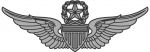 Army Aviator badge - Master