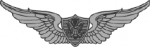 Aviation badge - Basic