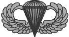 Parachutist badge - Basic