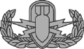 Explosive Ordinance Disposal badge