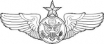 Enlisted Aircrew Member - Senior