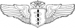 Flight Surgeon - Chief