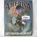 Cedule America Let Freedom Reign SFT-0ST-26